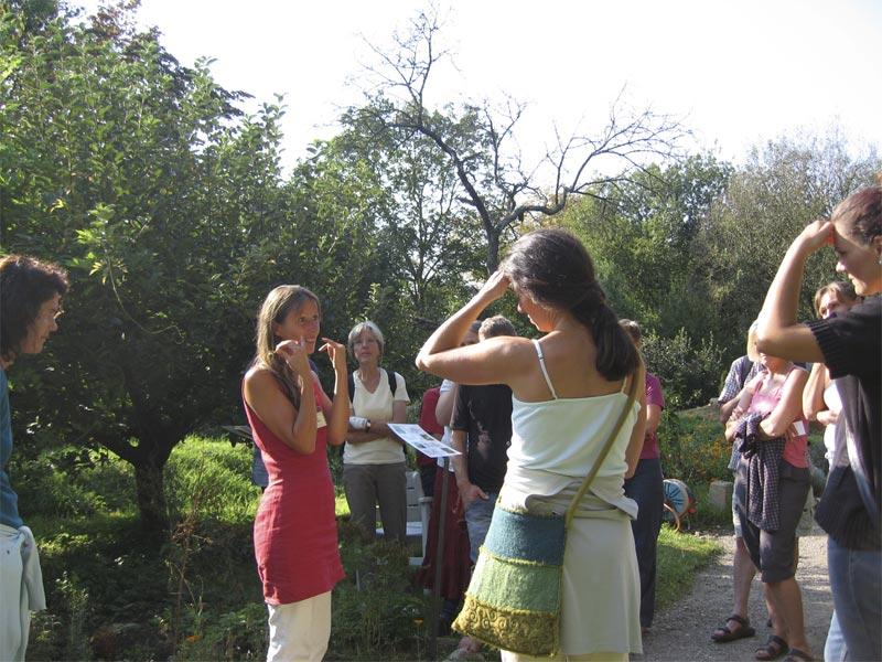 Achillea Gartenfuehrung